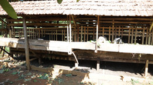 Desa Taripa 0620