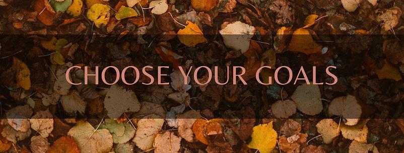 YOU CHOOSE YOUR GOALS.jpg