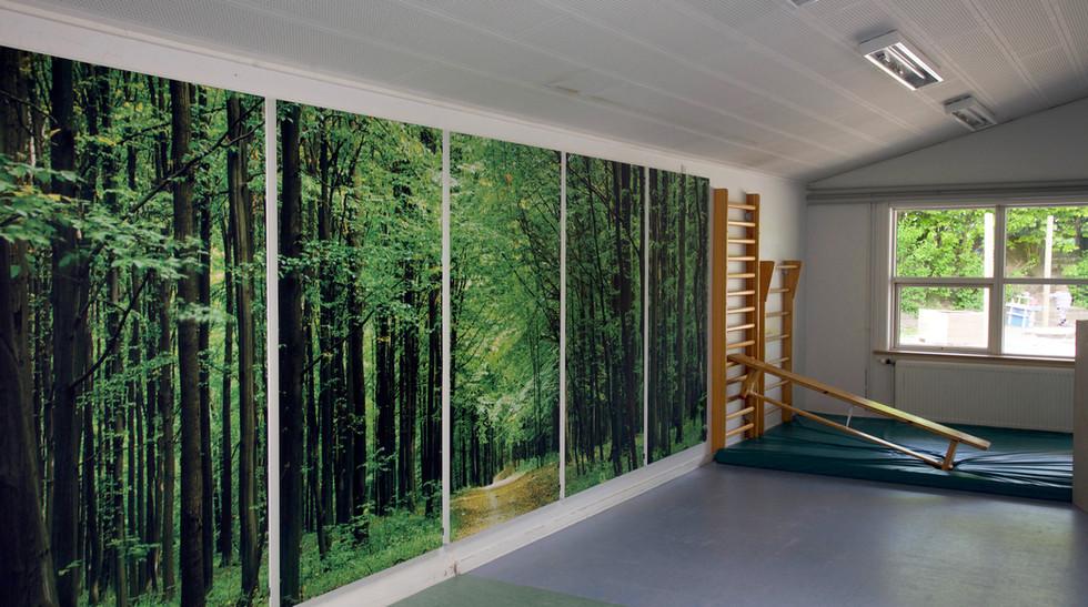 Akustikbilleder med skovmotiver i børnehave