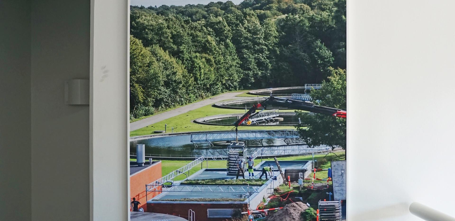 Akustikregulering hos Lyngby-Taarbæk forsyning - en løsning med Alpha Akustikbilleder og Alpha TYST