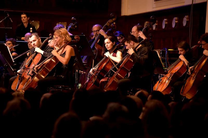 cello section (CNSO) Foto by David Webr