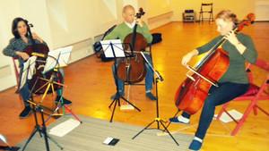 Cello meeting 4.11.2017