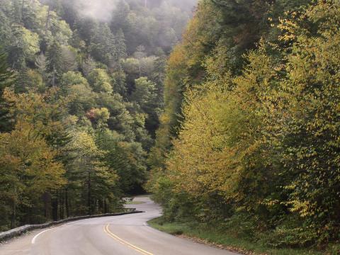 down road.jpg