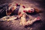 2014- _MG_0176-Beatrice Barberis.jpg