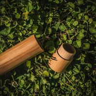 20200619-Earth-Thanks-_MG_0535-Bamboo To