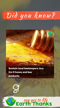 Let's learn about Bees and Beeswax story