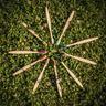 20200619-Earth-Thanks-_MG_0469-Bamboo To