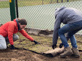 Planting Trees, Hedges and Laying Turf at the Florence Park Naturescape