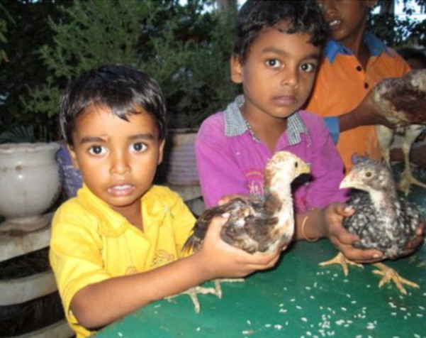 Growing Hope In India - A Feed My People Update