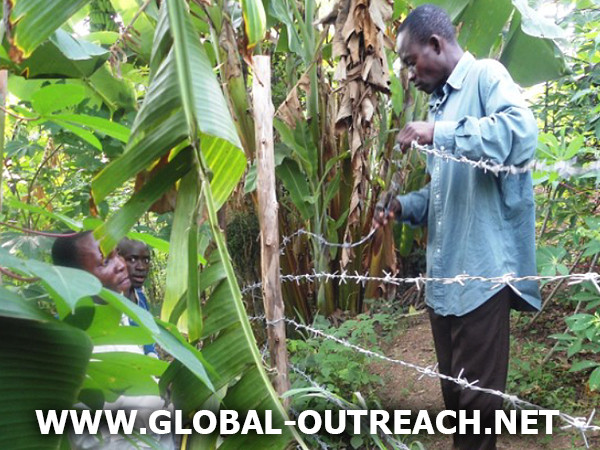 Help Us Keep Our Orphans In The Congo Safe