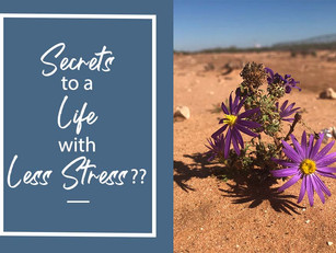 Secrets to a Life with Less Stress??