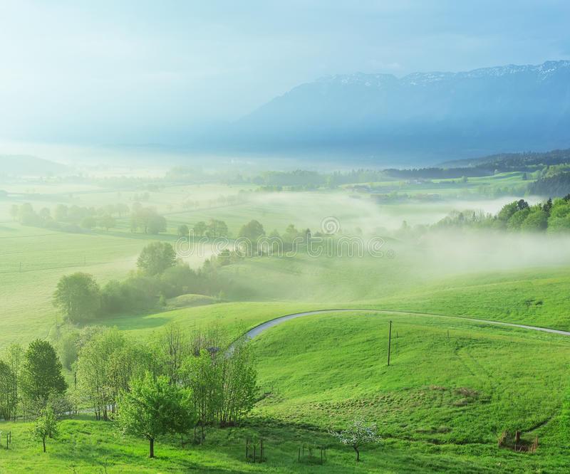 Bavarian Spring