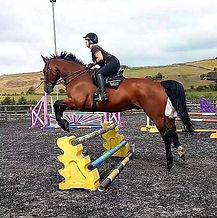 Vinny jumping HPRC.jpg