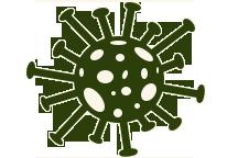 greengerm2.png
