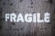 Fragility/ Feeling that any touch will make you crack and fall apart