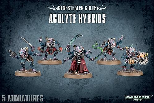 Hybrid Metamorphs / Acolyte