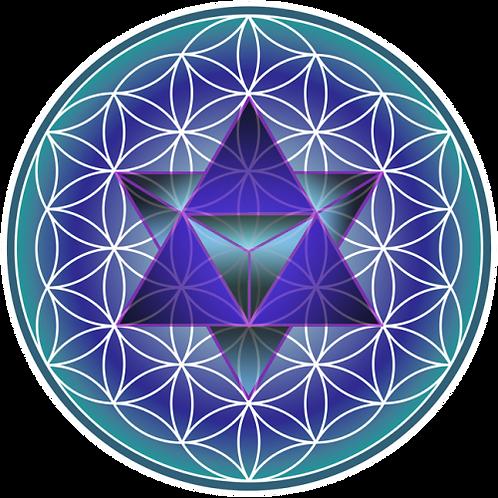 Shamanic Energy Healer training