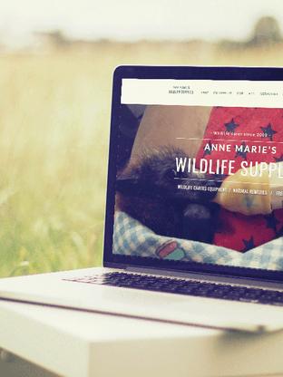 Anne-Marie's Wildlife Supplies