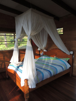 Double Queen size bed with net.