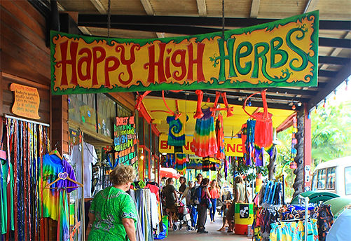 Happy High Herbs, a virtual emporium of alternative books, paraphernalia and potions to both calm or transcendentalise your day.