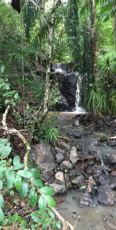 In the forest, you can view our waterfall that cascades nearly all year round