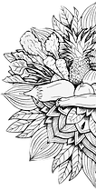 logo transp half L.png