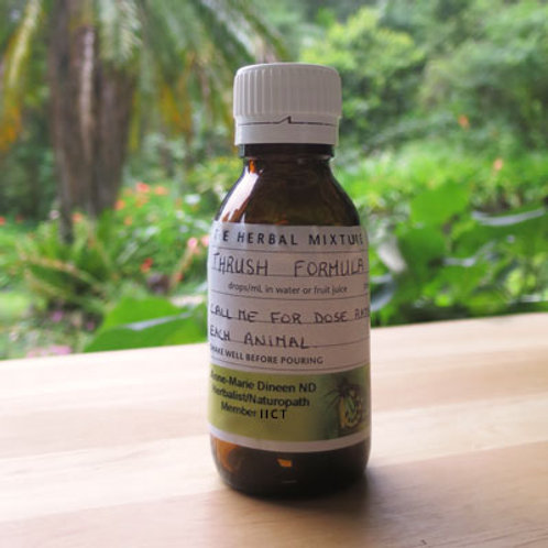 THRUSH FORMULA  Herbal Remedy