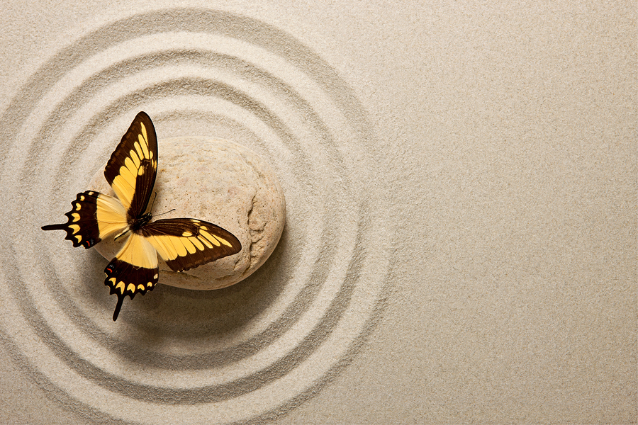 bigstock-Zen-stone-with-butterfly-46356769.jpg