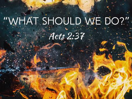 Beacon Online Worship Outline 05.31.20 Pentecost