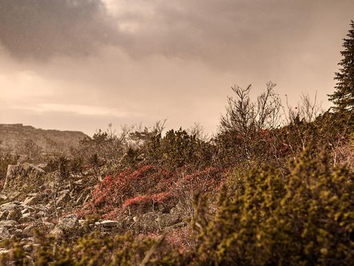Fotostrecke: Sompios heiliger Berg