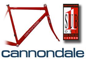 Designed logo and bike graphics
