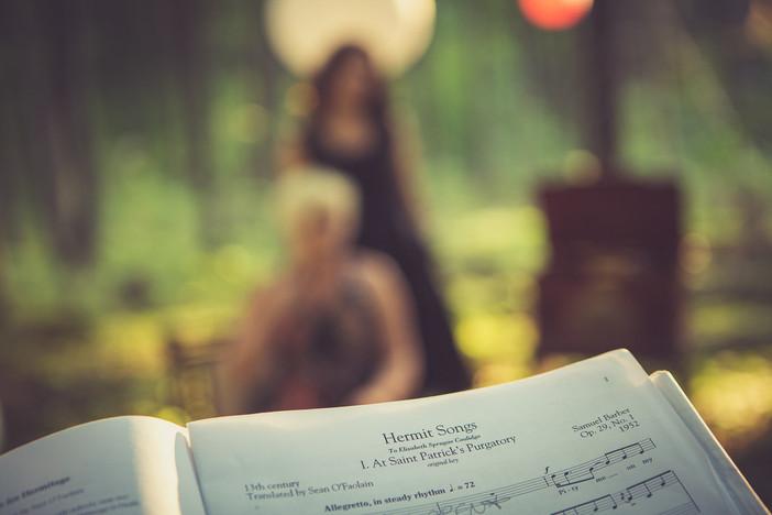 The Hermit Songs