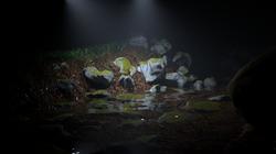 custome_lighting
