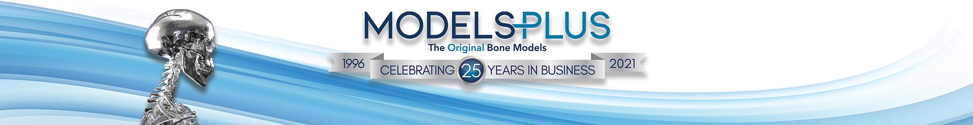 Models Plus | The Original Bone Models | Celebrating 25 Years in Business