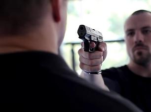 gun disarm.PNG