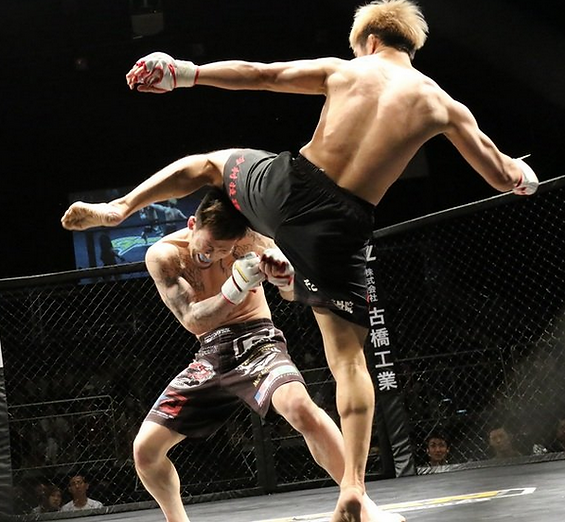 MMA9.PNG