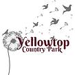 Yellowtop.png