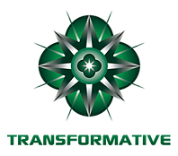 Transformative Group Logo