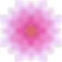 004-flower.png