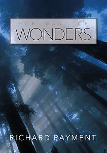 FOR WANT OF WONDERS