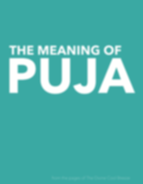 MEANING OF PUJA cover.png