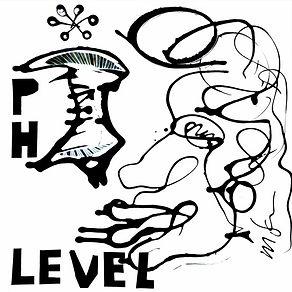 PH Level.jpg