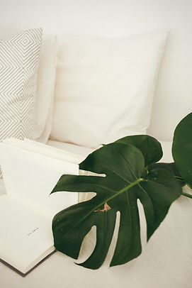 bed-color-contemporary-916336.jpg