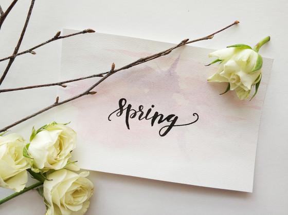 Hello, Spring...
