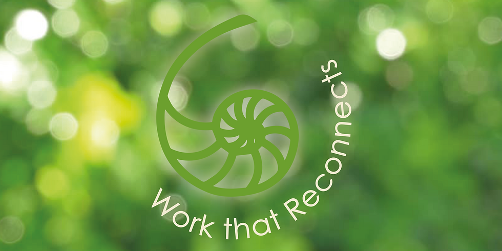 Work That Reconnects in Organisations