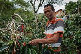 Sobur, a Certified Coffee Farmer in Indonesia | © Fairtrade