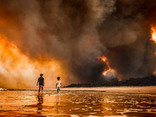 """If This """"Summer of Fire"""" Doesn't Jolt Australia into Action, What Will?"""