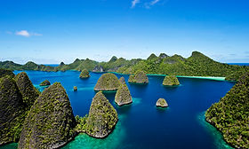 West Papua, The Coral Triangle