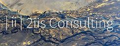 2iis Consulting Logo