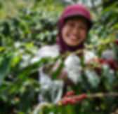 Hidayah of the KBQB Co-Operative, Indonesia | © Fairtrade